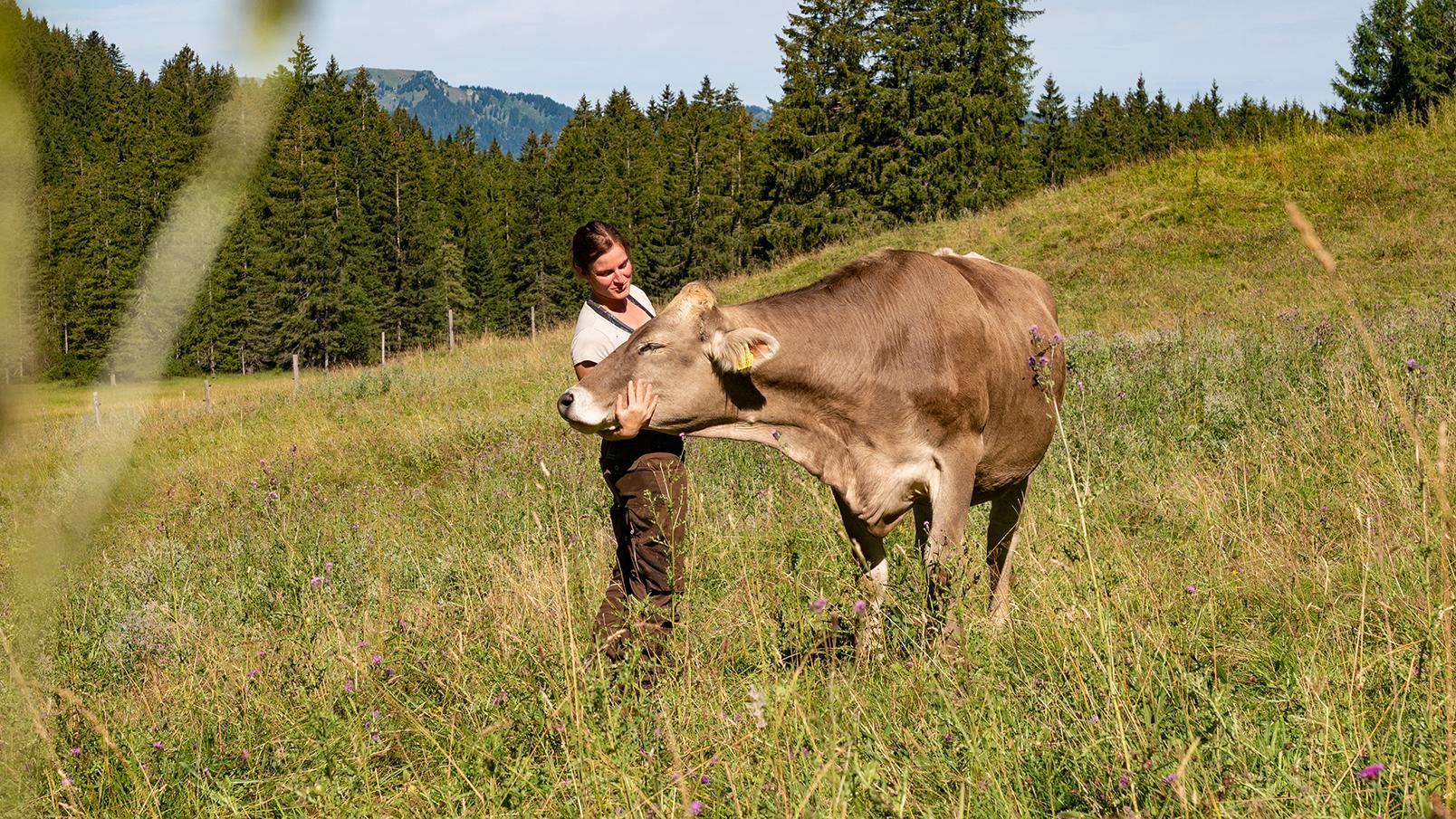 Das ist nicht nur für uns, sondern auch für die Tiere pure Entspannung! Somit können wir euch frische Milch anbieten. Lecker! Bei schlechtem Wetter wird die Milch unter anderem zu Butter, Buttermilch und Quark verarbeitet.